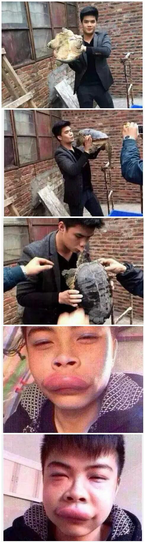 与乌龟亲吻的日子完整版